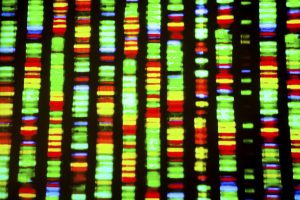 DNA sequence-Parkinson's Movement