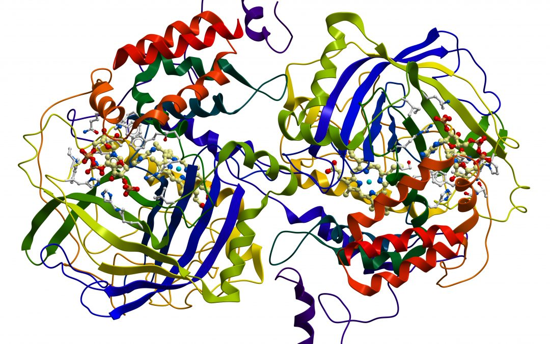 PD-related protein spreads from nose to brain