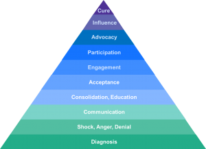 Tom's Advocacy Pyramid-Parkinson's Movement
